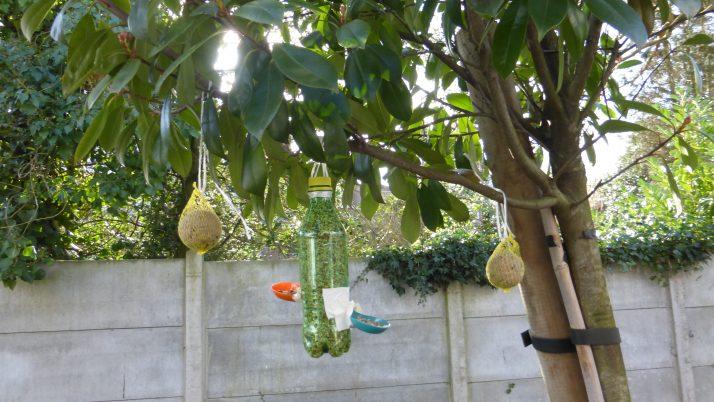 Fabrication d'une mangeoire pour les oiseaux! MS
