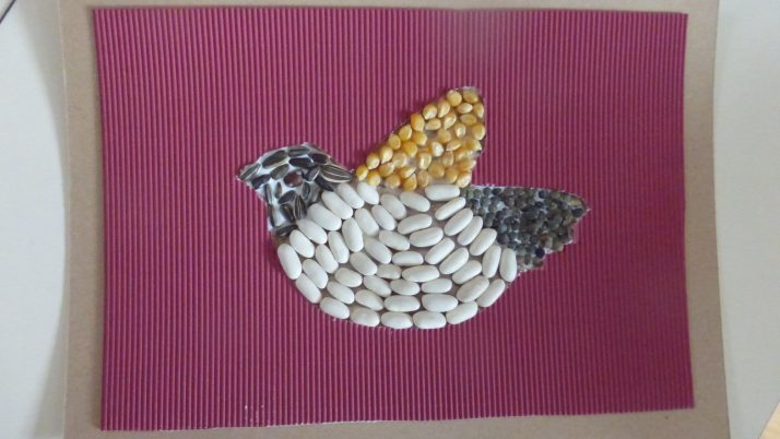 Les oiseaux MS1